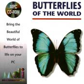 ButterfliesOfTheWorld